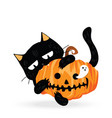 funny cute black cat biting halloween pumpkin vector image vector image