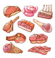 meat natural production hand drawn design set vector image