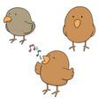 set of bird vector image vector image