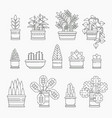 set of houseplants icons in line design editable vector image vector image