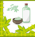 spa products to health care skin vector image vector image