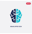 two color brain upper view icon from human body vector image vector image