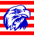 american eagle and strispe with usa flags vector image vector image
