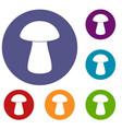 fungus boletus icons set vector image vector image