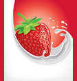 milk splash with fresh strawberry vector image