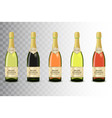 set of different champagne wine bottles on vector image