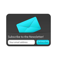 Subscribe to newsletter web form with blue letter vector image vector image