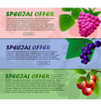 Three banner with raspberries currants and vector image vector image