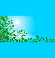 branches with leaves against the sky vector image vector image