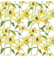 floral background flower lily background flourish vector image