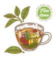 hand drawn cup tea herbal tea with lemon mint vector image vector image