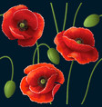poppy pattern black vector image vector image