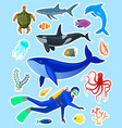stickers with ocean animals vector image vector image
