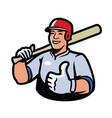 baseball player symbol sport vector image