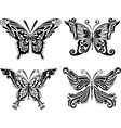 beautiful butterfly set vector image vector image