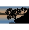 Beautiful sunset the river with silhouette tree vector image vector image