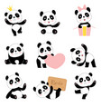 cute baby pandas toy animals chinese symbols vector image