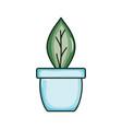 ecology leaf plant in ceramic pot vector image