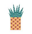 home cactus icon vector image vector image