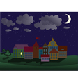 night town vector image