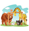 wooden frame with many animals vector image