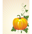 Background with pumpkin vector | Price: 1 Credit (USD $1)