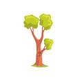 cartoon character of forest tree with sad face vector image vector image