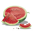 cartoon watermelon sliced sweet watermelon vector image vector image