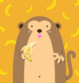 cute big fat monkey with banana vector image vector image