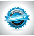 Guarantee Labels with shiny styled design vector image vector image