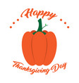 isolated pumpkin and text thanksgiving day vector image