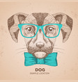 hipster animal dog hand drawing muzzle of dog vector image vector image