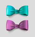 two realistic bow - green and violet isolated vector image vector image