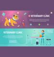 veterinary clinic horizontal banners vector image