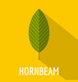 hornbeam leaf icon flat style vector image vector image