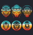 monkey music collection retro vector image vector image