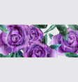 purple roses watercolor background vintage vector image vector image