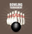 set bowling skittles and bowling ball - poster vector image