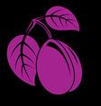 Single purple simple plum with leaves ripe sweet vector image