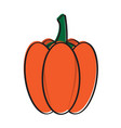 sketch of a pumpkin vector image vector image