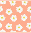 white chrysanthemum on pink peach background vector image vector image