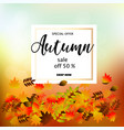 autumn sale banner with colorful fall leaves vector image vector image