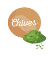 chives banner and title spice vector image vector image