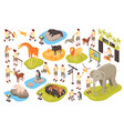 isometric animal park set vector image vector image