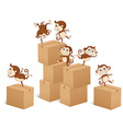 Monkeys climbing up the boxes vector image vector image