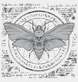 moth acherontia atropos on an abstract background vector image vector image