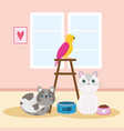 pets cats parrot food canned fish domestic animals vector image vector image