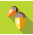 Two acorns icon in flat style vector image vector image