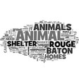 baton rouge animal shelter text word cloud concept vector image vector image