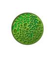 green 3d papercut leaf circle concept vector image